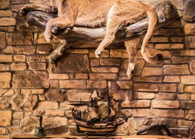 cabin-remodel-stone-mantle-stuffed-mountain-lion-florissant-co